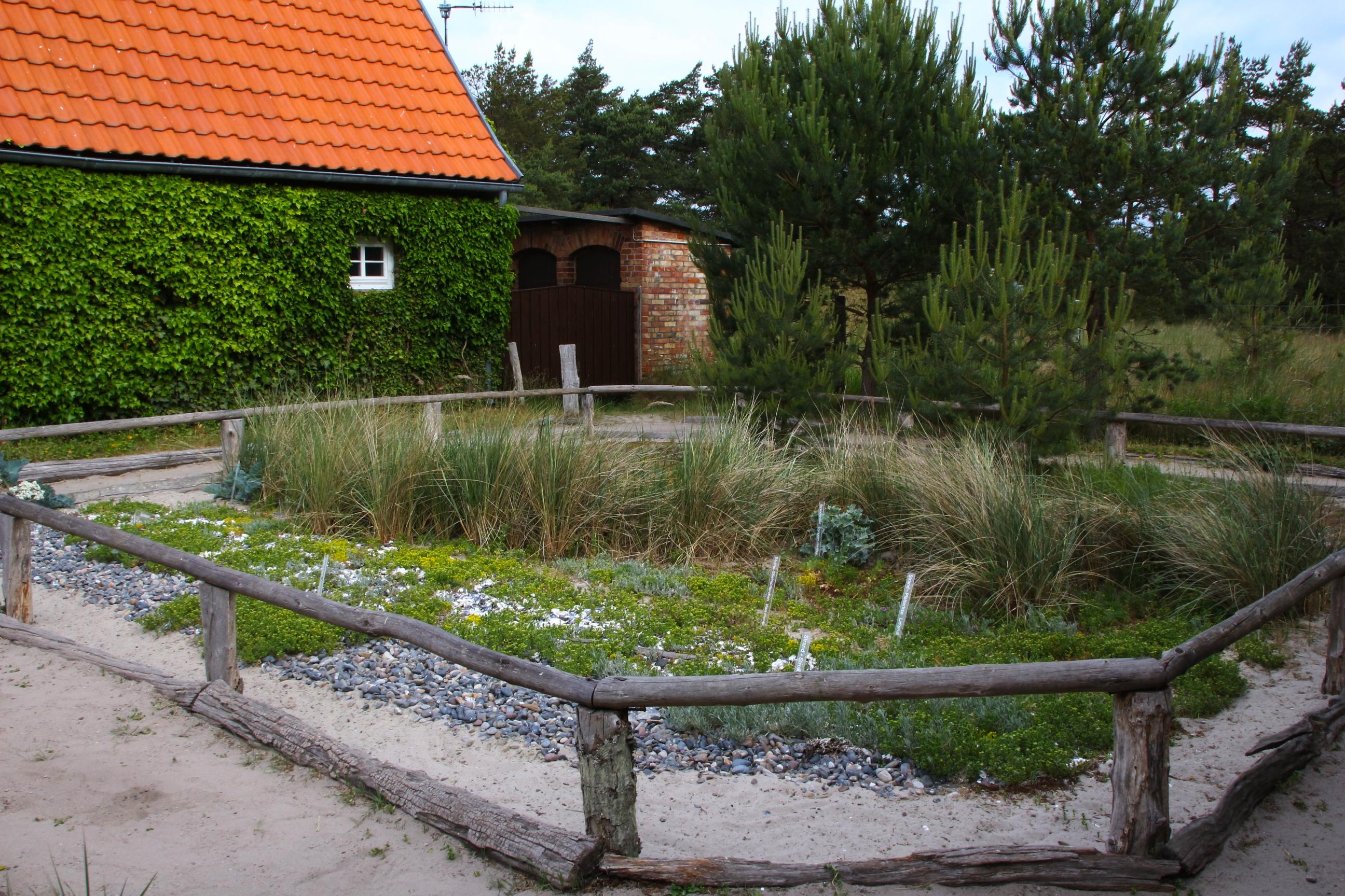 Strand Und Dünengarten